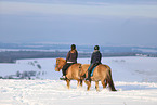 riders on Icelandic horses